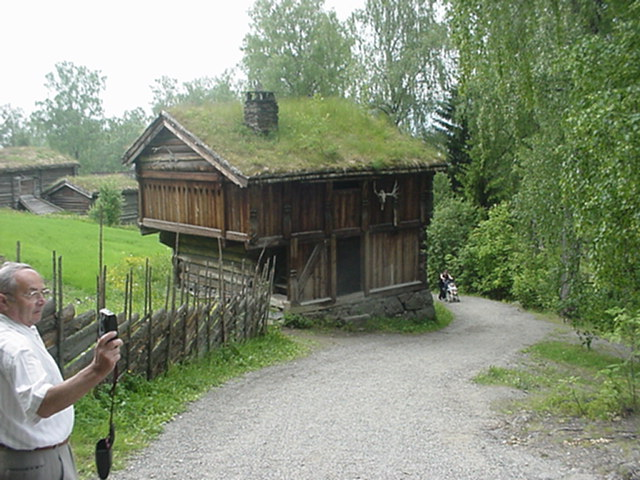 Grass Roofs In Norway Environment Solutions